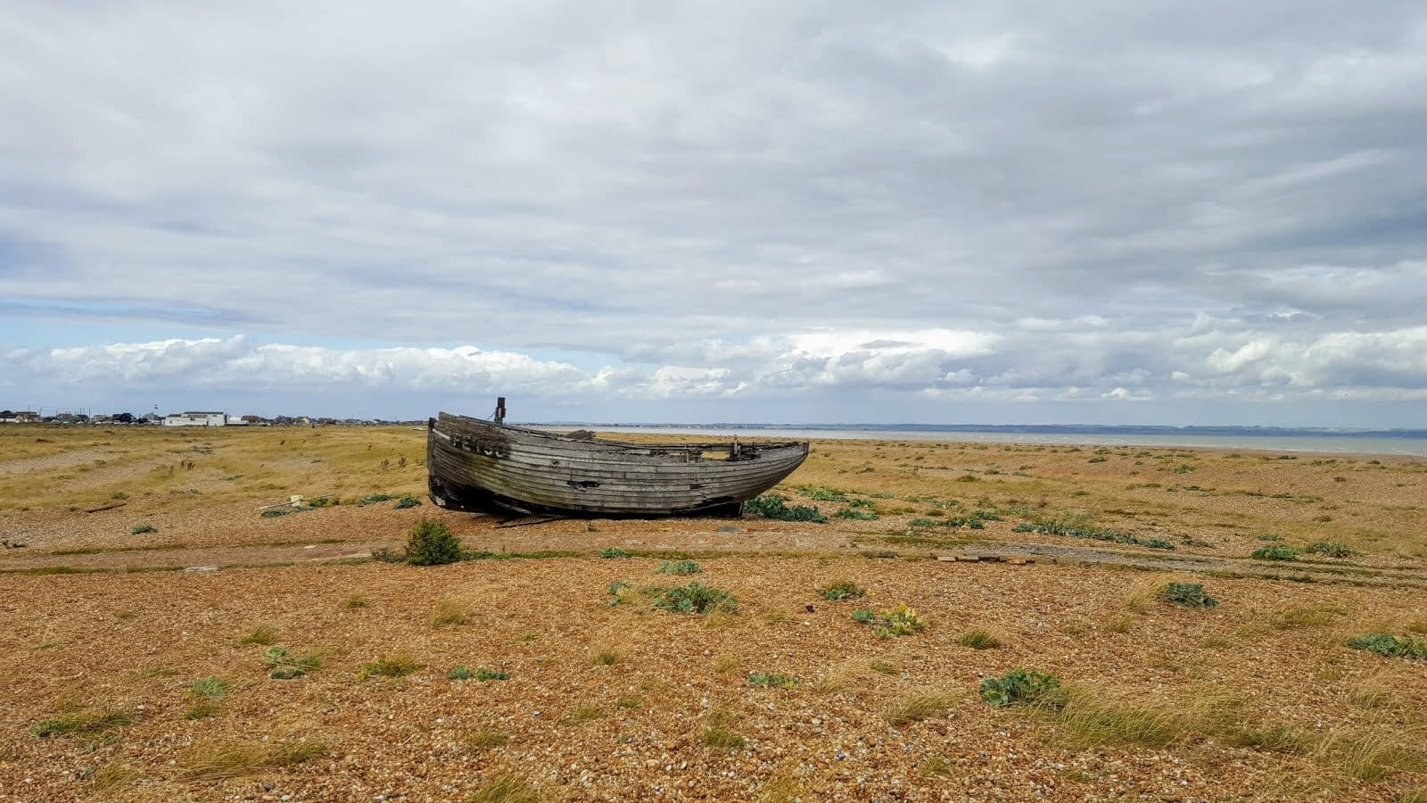 Things to do in Dungeness: Photo Essay 8