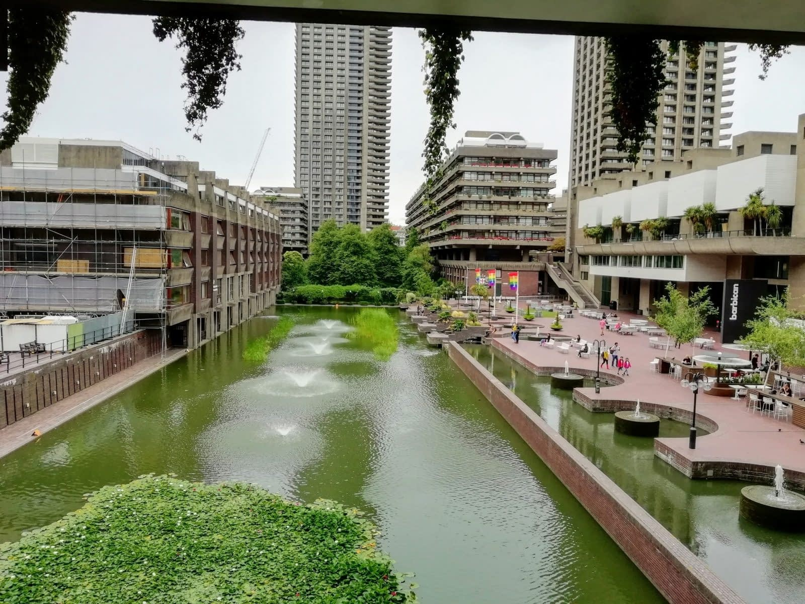 Visiting Barbican Conservatory: Photo Gallery 12
