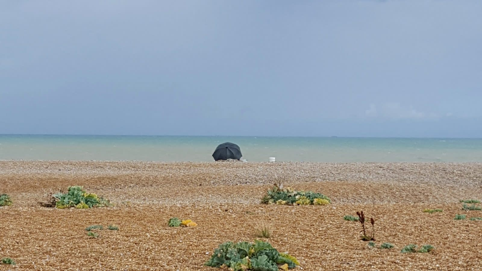 Things to do in Dungeness: Photo Essay 19