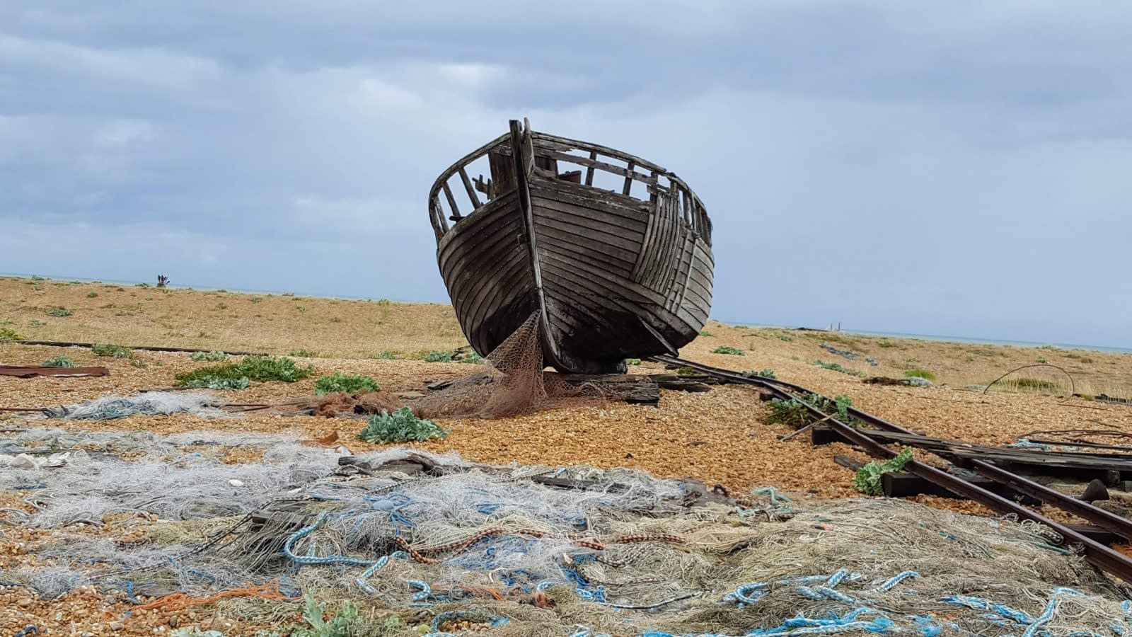 Things to do in Dungeness: Photo Essay 7