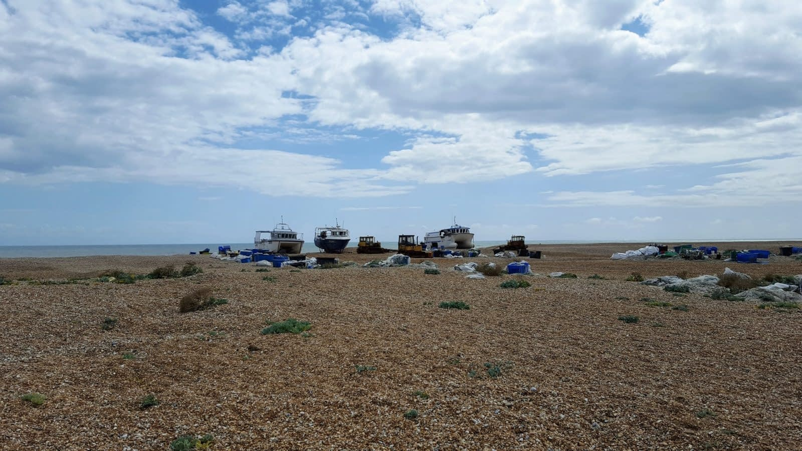Things to do in Dungeness: Photo Essay 26