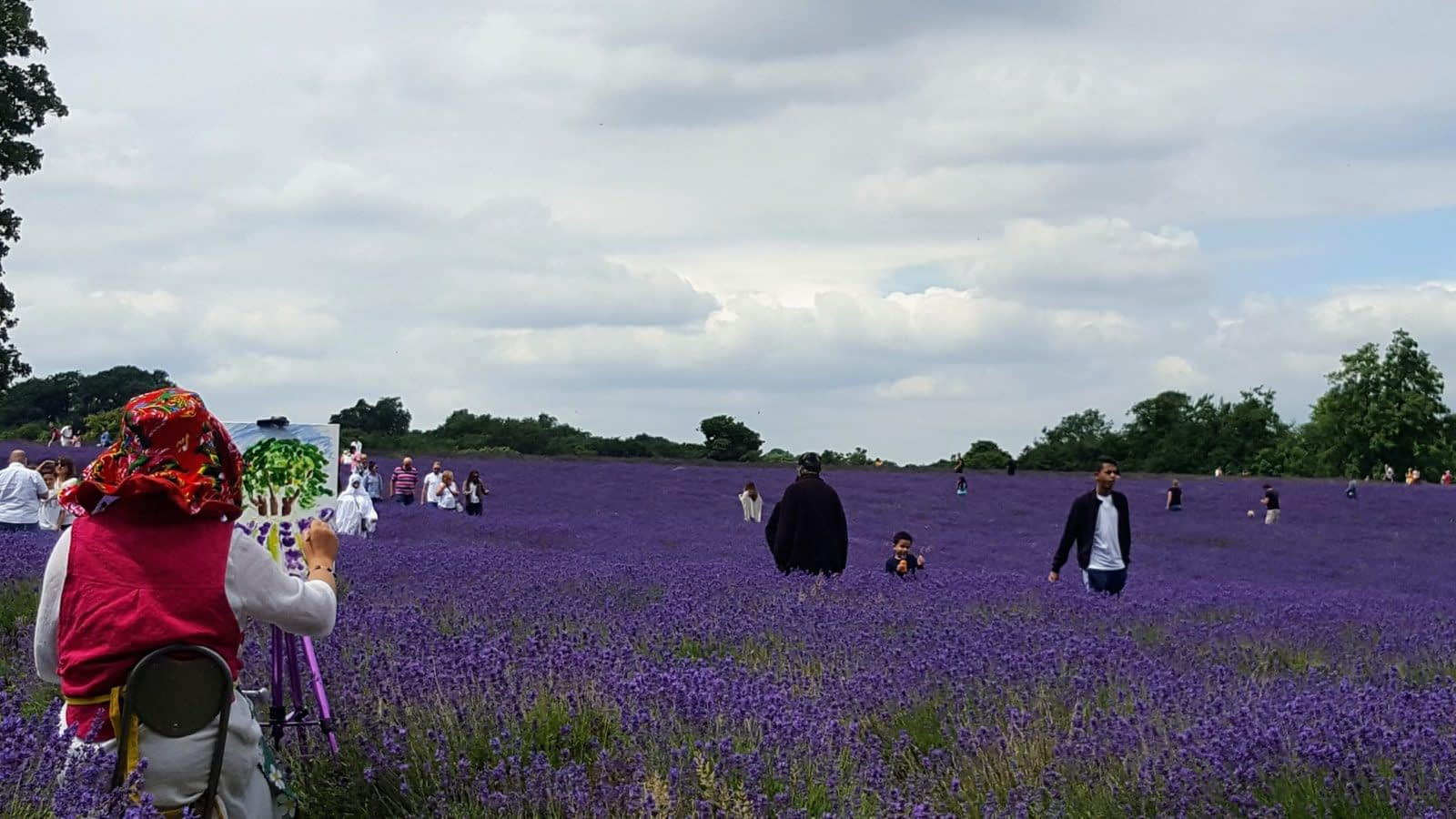 Painting at Mayfield Lavender Farm